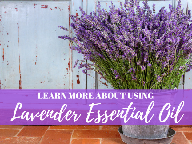 Learn More About Using: Lavender Essential Oil with Kristie Miller, MH, CA course image