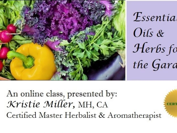 Essential Oils & Herbs for the Garden with Kristie Miller, MH, CA course image