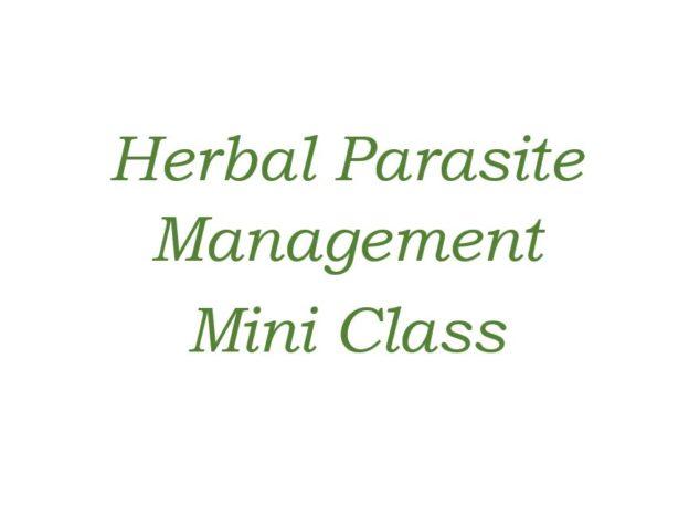 Herbal Parasite Management - Mini Class course image