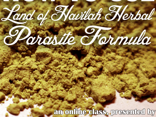 How to Use Our Herbal Parasite Formula Mix with Kristie Miller, MH, CA course image