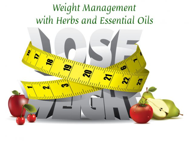 Weight Management: Herbs & Essential Oils with Kristie Miller, MH, CA course image